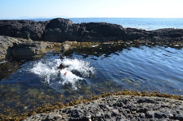 ...eller berre eit forfriskande bad i Atlanterhavet...