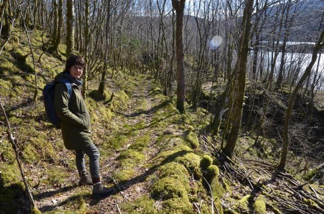 Steinbrotsveg ned til fjorden frå brota på Rønset