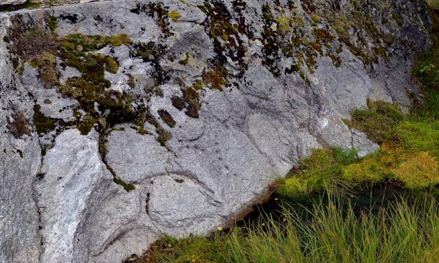 Dei eldste «peperkakebrota» i Hyllestad. Her frå Sæsol, der drifta kan gå tilbake til 700-talet e.Kr.