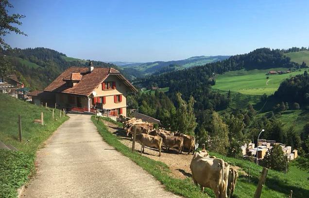 Entlebuch, Sveits: Jordbruk og melkeproduksjon står sterkt. Foto: Trude Søilen.