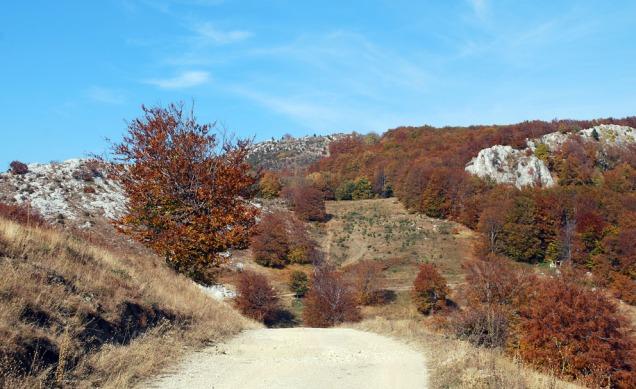 Kalksteinsfjell nær Kalkovnen i Podeni.