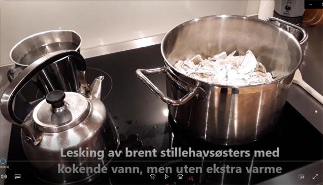 Kjemi på kjøkkenbenken_ Lesking av østers!