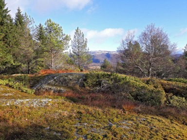 Utsikten mot Robba og Blåfjellet i Hyllestadmarka. Foto: Per Storemyr