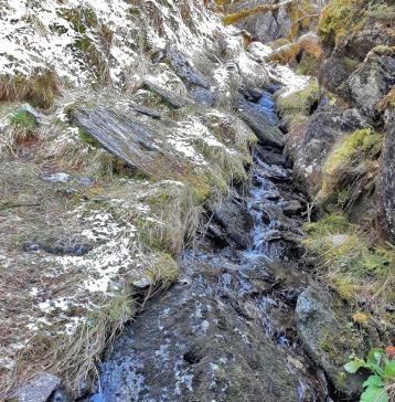 På veg inn i Myklebustbrota: Her er Kvernsteinsbekken, full av kvernstein som vart øydelagdeunder hogginga. Foto: Per Storemyr