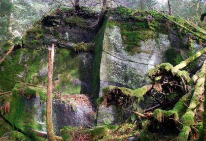 Storbrota i Hyllestadmarka. Brotet er nesten 10 m høgt og ein kan sjå restar av plattformar der dei hogde ut kvernstein for 1000 år sia. Foto: Per Storemyr